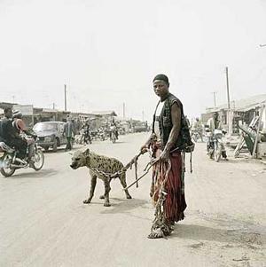 Hyena06